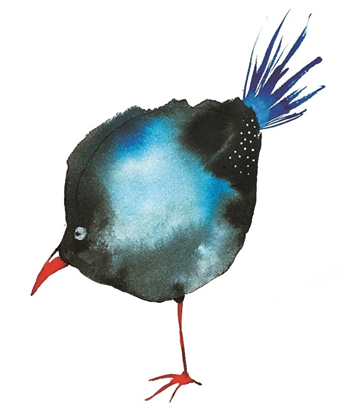 How To: Create an Abstract Watercolour Bird with Illustrator Veronica Ballart Lilja