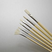 Cass Art Hog Bristle Brush Set of 6