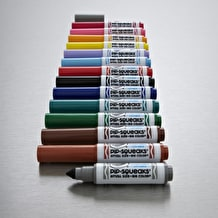 Crayola Pipsqueaks Mini Markers Set of 14 Assorted Colours