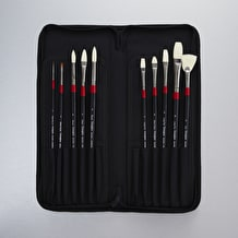Daler Rowney Georgian Cass Exclusive Oil Brushes In Case Set of 10