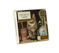 Creative Tops Basking Cat Pack Of 6 Premium Coasters