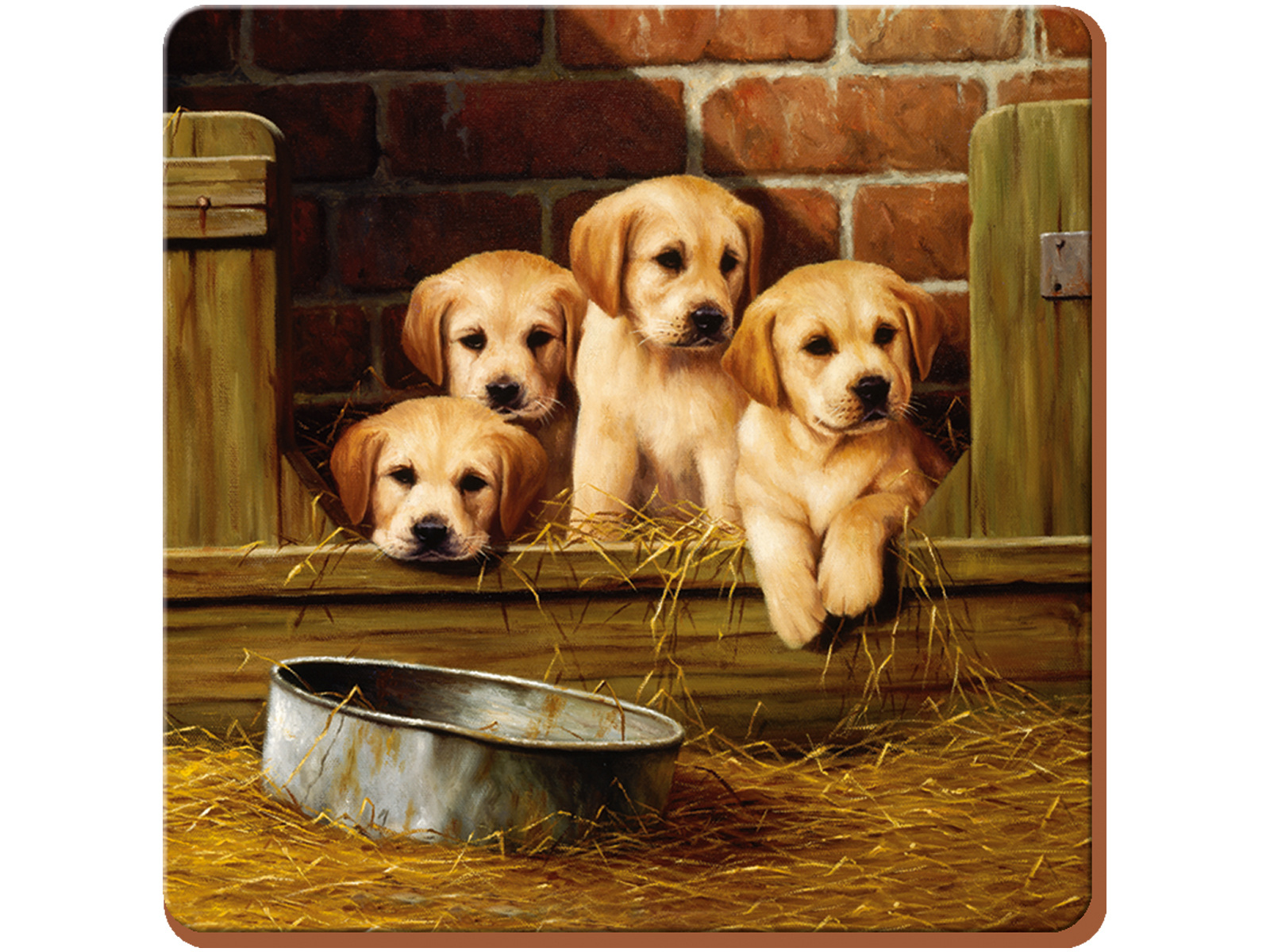 Creative Tops Labrador Puppies Pack Of 6 Premium Coasters