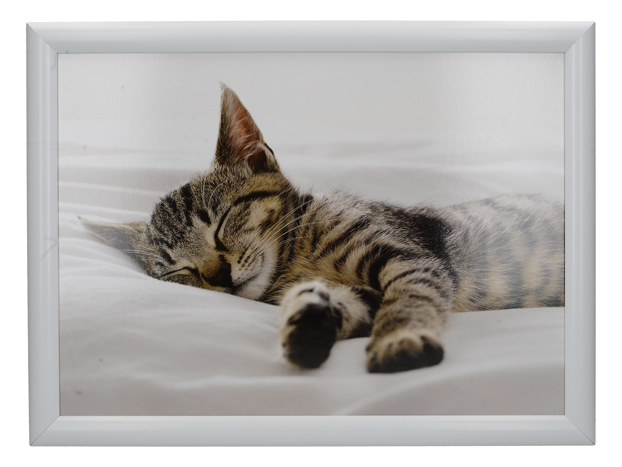 Creative Tops Sleeping Kitten Laptray