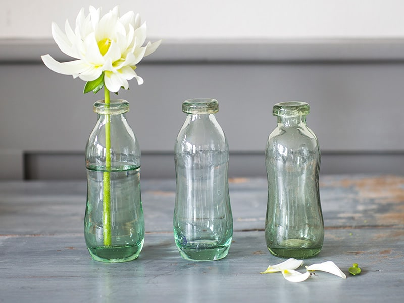 Set of 3 recycled glass bottles in a row with a single stemmed white flower