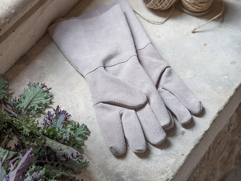 Gardening gloves with twine and salad leaves on windowsill