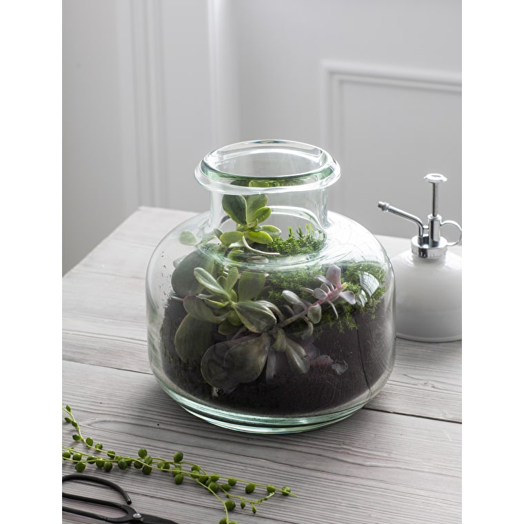 Recycled Glass Tabletop Terrarium | Garden Trading