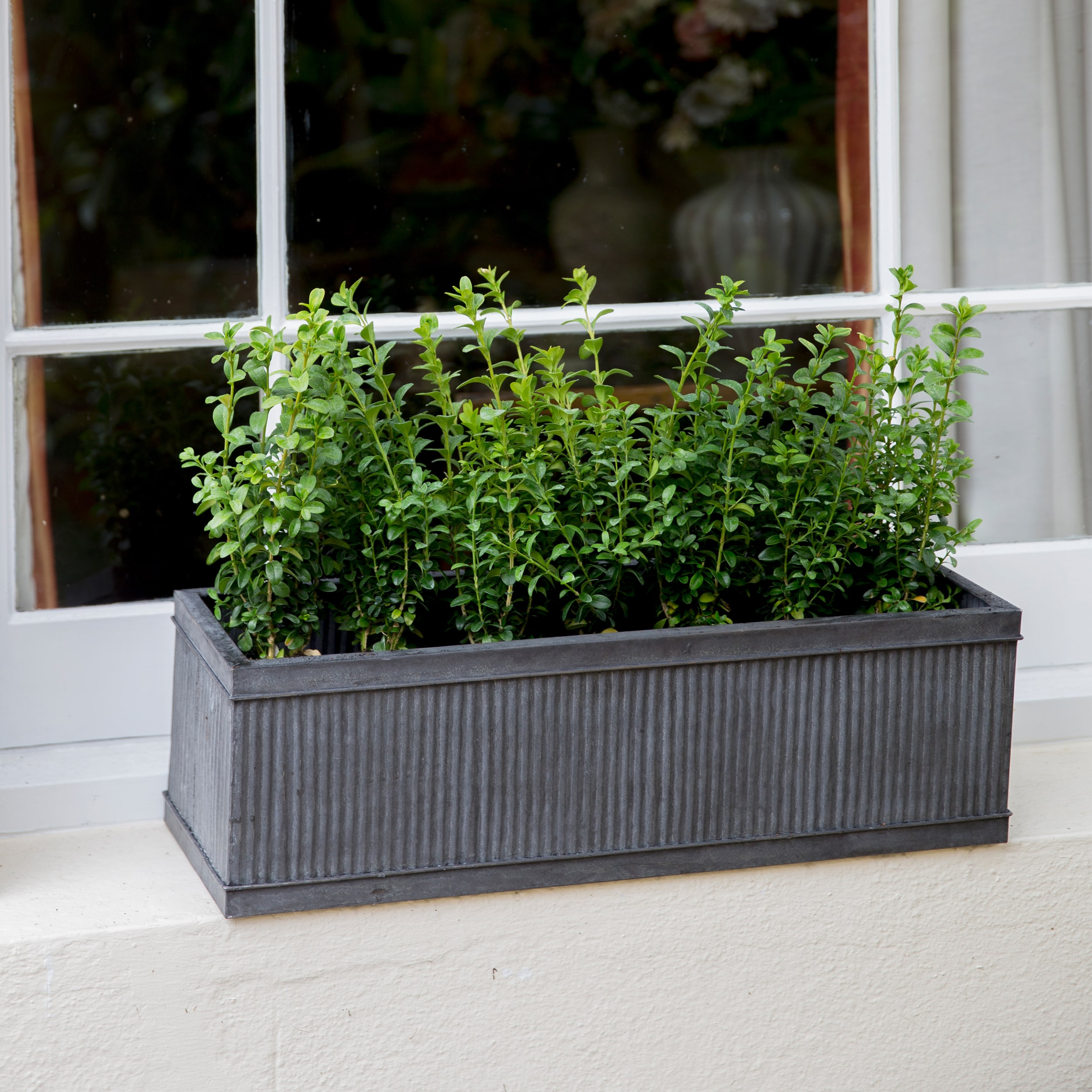 Steel Vence Window Box In Small Or Large Garden Trading