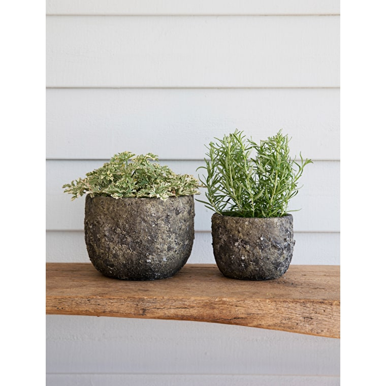 Ceramic Elkstone Pot in Small or Large | Garden Trading