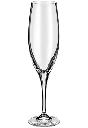 Judge Glassware  Champagne Flute Glass Set