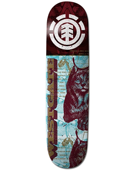 Element Westgate Overprint Featherlight Pro Deck - 8""