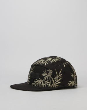 Element Sativa 5 Panel Cap - Black