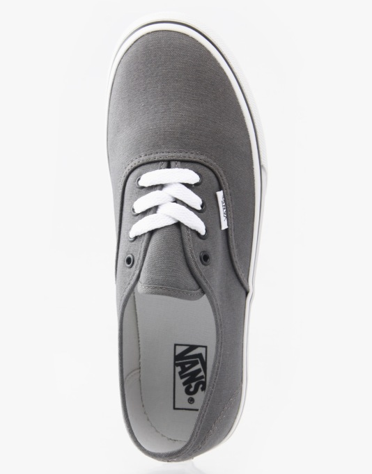 Vans Authentic Boys Skate Shoes