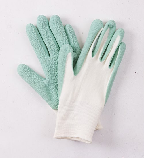Antibacterial Soft-to Touch Gloves