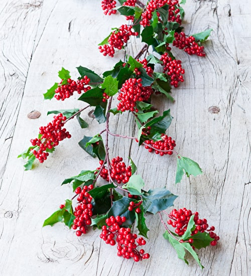 Holly and Berry Garland