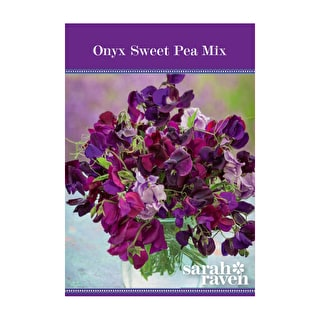Onyx Sweet Pea Mix