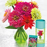 Vase and Seeds Gift Sets