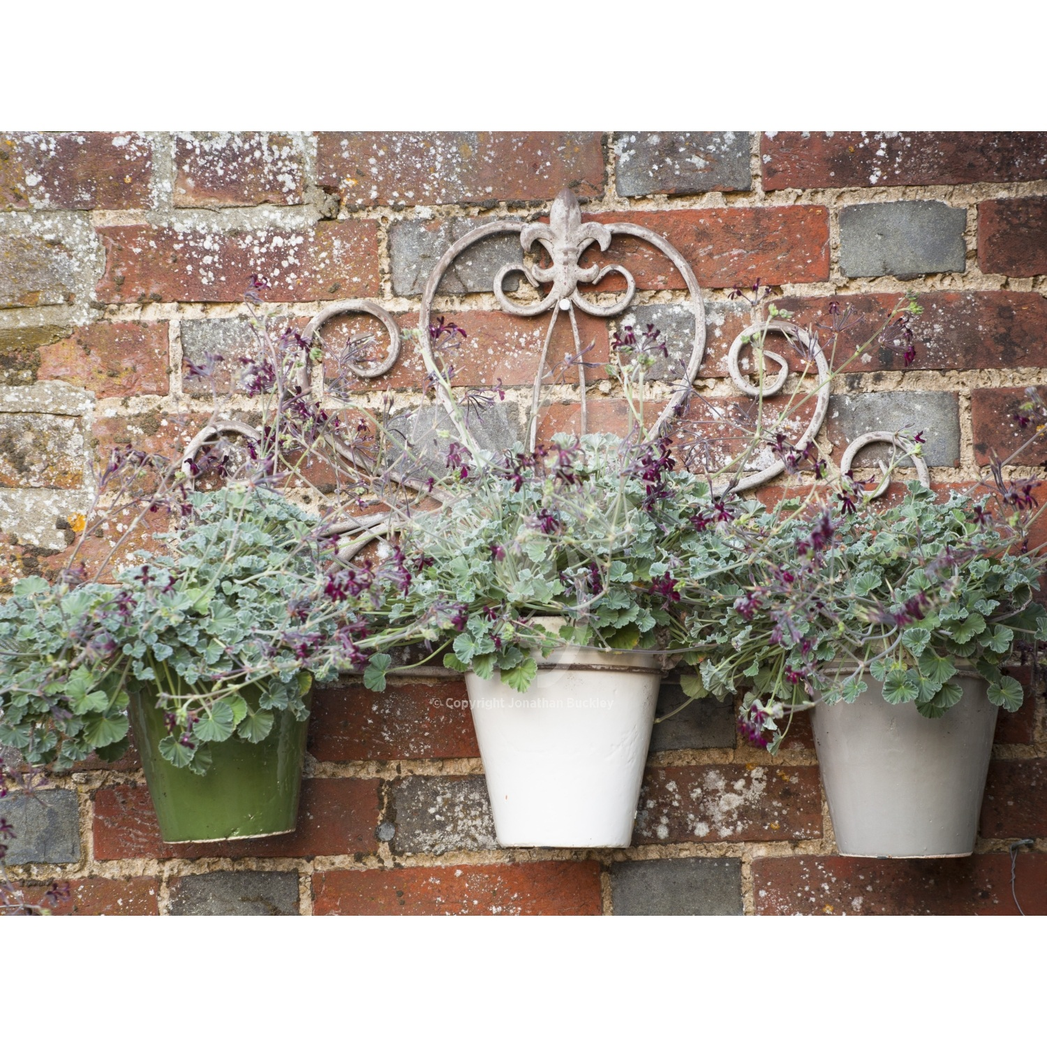 Wall Mounted Plant Stands 50 Ways To Welcome Spring Into