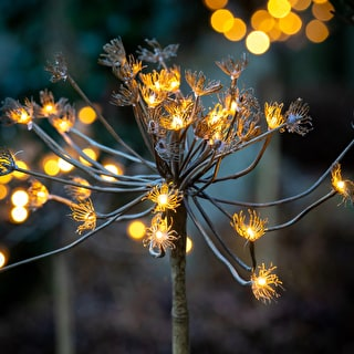 Giant Hogweed Stem with Lights