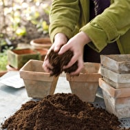 GroChar Seed Compost