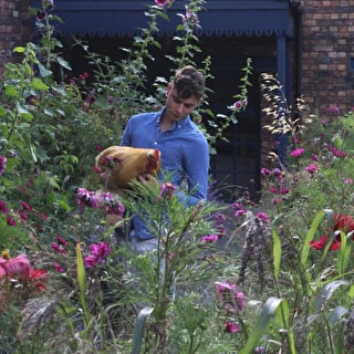 Keeping Hens in the Garden with Arthur Parkinson
