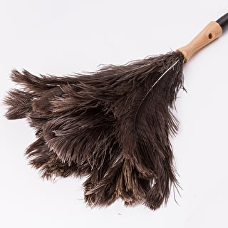 Extending Feather Duster