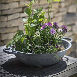 Galvanised Tabletop Planter