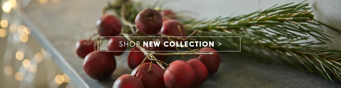 Shop New Collection