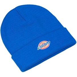 Dickies Colfax Beanie - Royal Blue