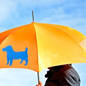 Personalised Dog Umbrella