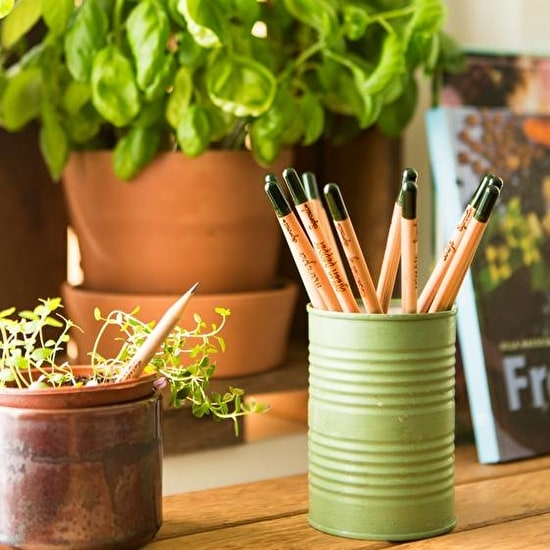 Set Of Six Sprout Herb Growing Pencils