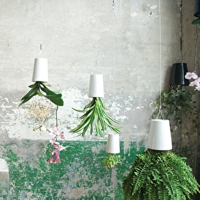 Glass Test Tube Vases In A Concrete Base
